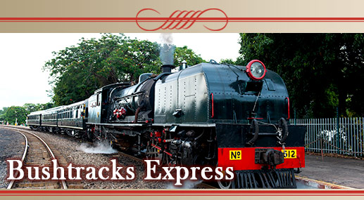 The Bushtracks Express